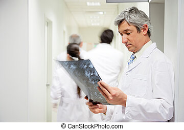 Radiologist Reviewing X-ray - Mature male radiologist...