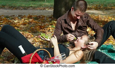 Teen couple having a picnic - Young loving couple having a...