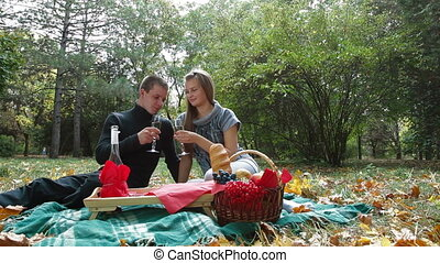 together at picnic - Loving couple celebrating together with...