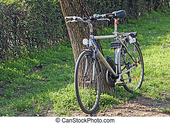 tourist bicycle leaning against a tree during a sunny day in...