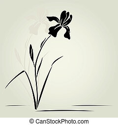 Vector iris flower - Vector illustration with iris for...