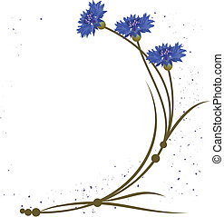 cornflower - vector background with flowers of the...