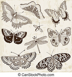 Vector Set: Calligraphic Butterfly Design Elements and Page...