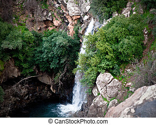 Banias is a nature reserve in the Golan Heights.