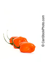 Three Habaneros Vertical - Three Habanero chili peppers in a...