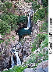 Banias is a nature reserve in the Golan Heights. - Banias...