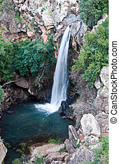 Banias is a nature reserve in the Golan Heights - Banias...