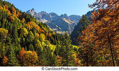 Autumn atmosphere in the Allgaeu