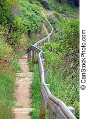 Trail with timber handrail