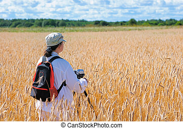 Wheat field - Woman pursuing research in the wheat field