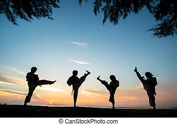 silhouette of taekwondo student during practice at sunset.
