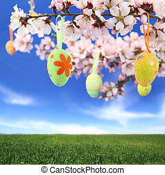 Easter eggs hanging on the almond tree