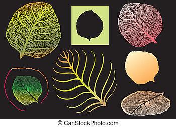 High detailed leaf for designer