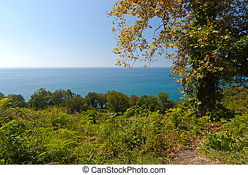 Sea View - Wonderful view of sea and blue sky and through...
