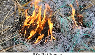 fishing net, fire, poaching