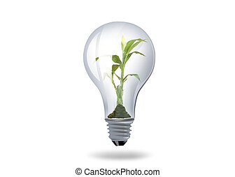 light bulb with plant inside - illustration of light bulb...