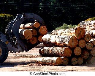 Sawmill machine - A machine in a sawmill loading logs