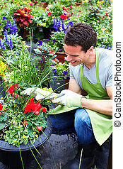 Man working in nursery - People working in nursery Gardening...