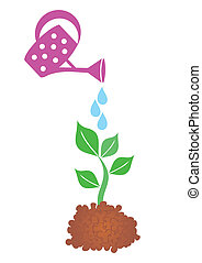 Water can - Watering can with small plant on white...