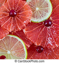 Citrus slices background - grapefruit and lime, square