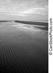 Black and white low tide beach landscape