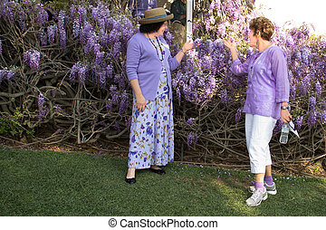 Two Ladies Admiring Wistaria Vines - Two ladies dressed in...