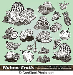 Vintage Fruits Collection - Set of Various Design Elements...