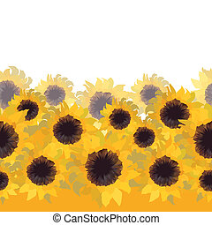 Sunflower flower seamless background.
