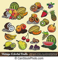 Vintage Colorful Fruits Collection - Set of Various Design...