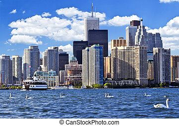 Toronto waterfront with white swans in the harbour