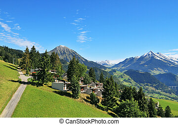 Road among alpine meadows and mountain chalet - Gorgeous...