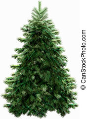 Christmas tree with clipping path - Firtree with clipping...