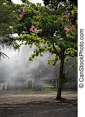 Asian village - The image of the Asian village with a smoke...