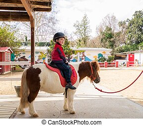 Little boy in protective helmet riding on pony