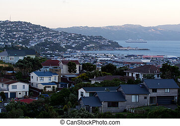Wellington Cityscape - Aerial view of Wellington, New...