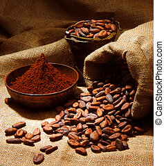 cacao industry