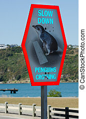 Penguins Crossing Sign - Street sign reads slow down...