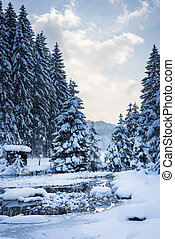 cold winter snow landscape at river with trees and sky