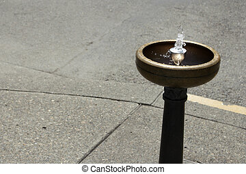 Portland Drinking Water Fountain