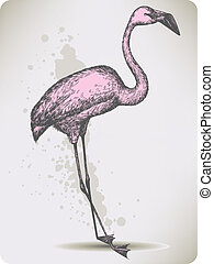 Pink flamingo bird, hand-drawing Vector illustration