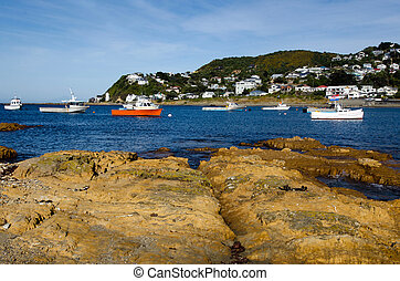 Wellington Cityscape - Fishing boats in Island bay in...