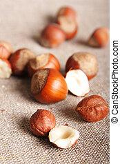 Hazelnut - tasty yummy hazelnut on canvas close up