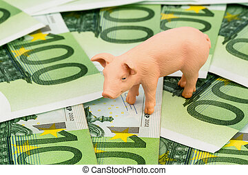 pig on euro banknotes money