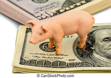 pig on dollar banknotes - a pig stands on dollar banknotes....