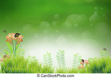 green grass field and butterfly insect on flower use for...