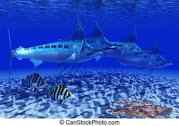 Blue Marlin Pack - A Basket Starfish slithers across the...