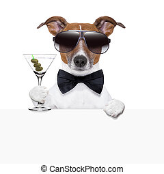 funny cocktail dog banner - funny cocktail dog behind a...
