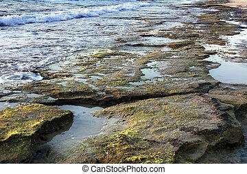 Rocky Beach at Dusk - Time of dusk at the beach Algae...