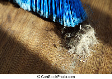 Broom, Dust & Fur Ball on Parquet Floor - Window sunlight...
