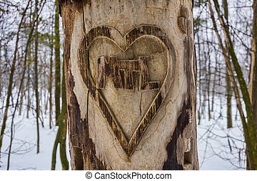 Heart Carved Tree with I Love Montreal message and snow in...